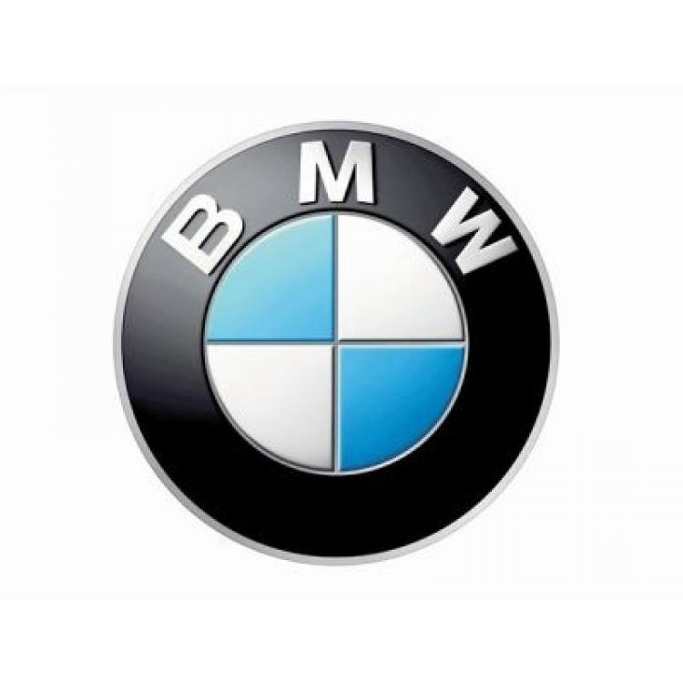 BMW  Car remapping files